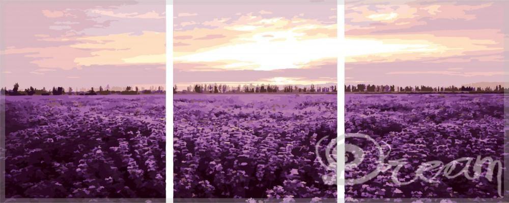 "Фото Триптих по номерам ""Лавандовое поле"""