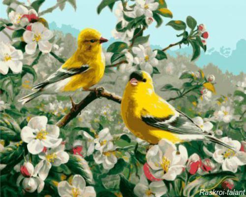 "Фото Картина по номерам ""Желтые птички"""
