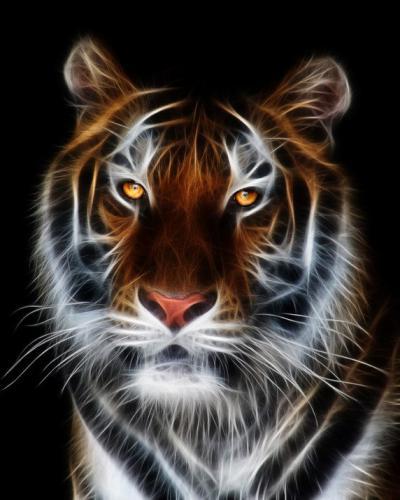 "Фото Картина по номерам ""Тигр – абстракция"""