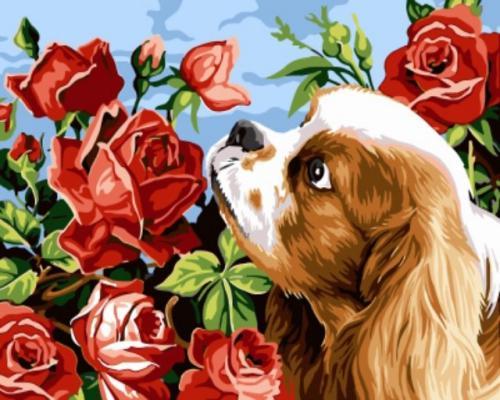 """Фото Живопись по номерам """"Собака в розах"""""""