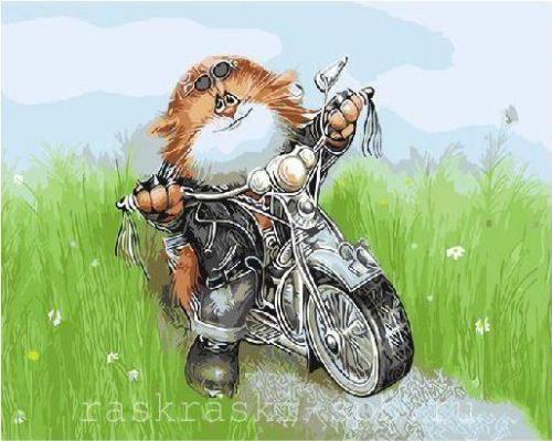 """Фото Живопись по номерам """"Кот на мотоцикле"""""""
