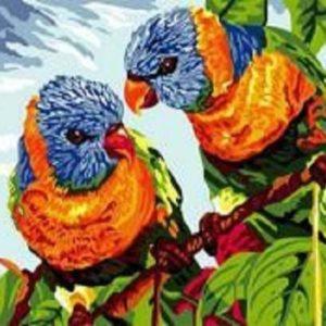 """Фото Живопись по номерам """"Два попугая"""""""