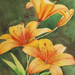 """Фото Картина по номерам """"Оранжевые лилии"""""""