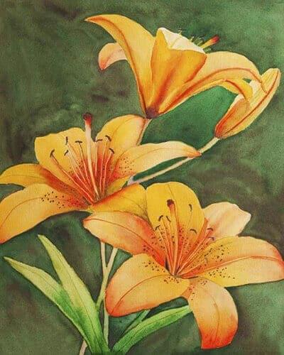 """Картина по номерам """"Оранжевые лилии"""" Фото 1"""