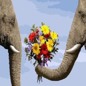 """Фото Картина по номерам """"Букет и слоны"""""""